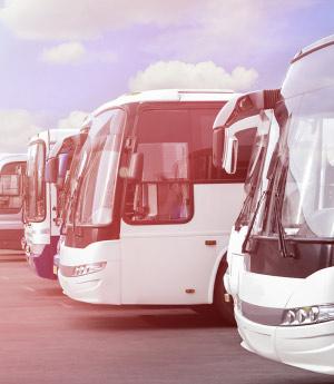 bus-300x3451